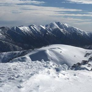 half day hotham sled ride
